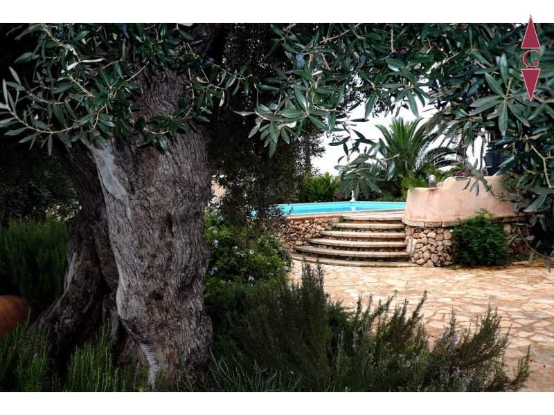 1-240 Garten