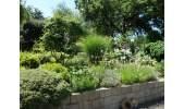 1-441 Garten