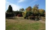 1-456 Garten Aussicht 1