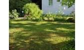 1-487 Garten
