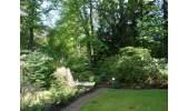 1-518 Garten