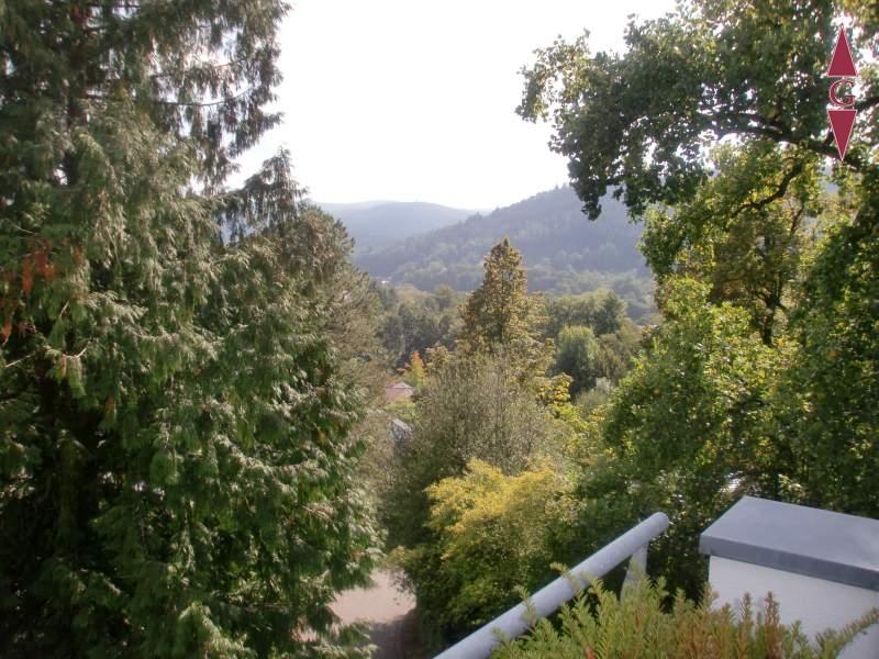 1-392 Ausblick Terrasse